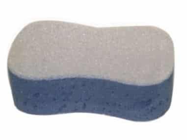 detail sponge to remove bug stains