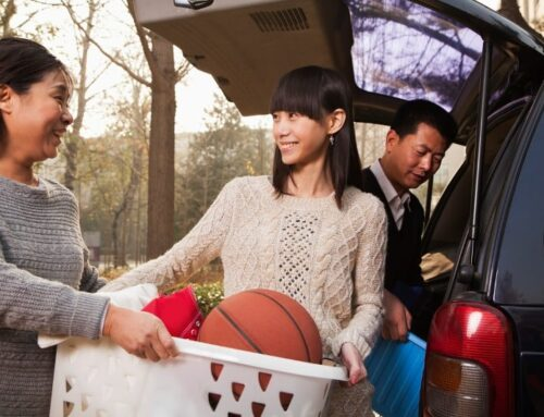 Tips To Make Your Car Eco-Friendly